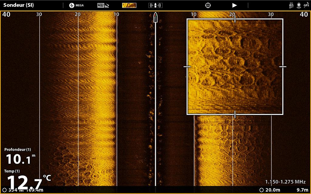 Mega-Side-Imaging-9.jpg